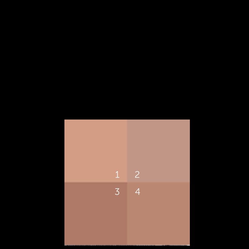 VFN05 - Bronzer Terra 4 Stagioni 9 G